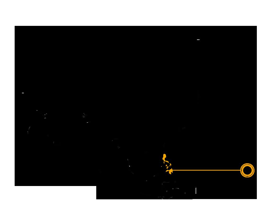 Palawan Water Monitor Lizard map