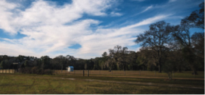 The farm's production practices leave open space for wildlife from its setting near the Okefenokee National Wildlife Refuge