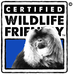 Certified Wildlife Friendly - Lion Tailed Macaque_Color_Lion Tail Macaque